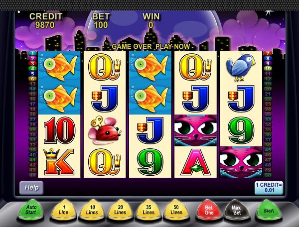 Игровой автомат Miss Kitty - потрясающий кошачий слот в казино Вулкан Старс